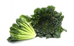 有机乌塌菜 绿叶蔬菜 宝宝辅食 火锅食材新鲜蔬菜 欧盟美国中国有机认证 孕妈食材 500g