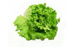 新鲜蔬菜绿叶生菜 约300g 生菜 火锅食材 沙拉食材 500g