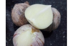 云南农家自种紫皮独头大蒜 紫蒜新鲜红皮大蒜头干蒜 优选大个5斤