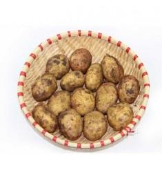 新鲜土豆 云南红皮黄心小洋芋马铃薯火锅食材新鲜蔬菜 小土豆10斤