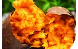 福建六鳌红薯 红蜜薯 沙地地瓜番薯 新鲜蔬菜 京东生鲜 红薯小果5斤装20-30根