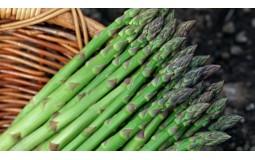 芦笋蔬菜新鲜3斤绿卢笋切除白根农家自种蔬菜龙须菜芦笋种孑