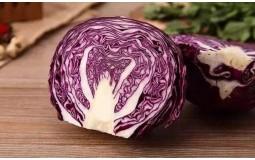 新鲜紫甘蓝 蔬菜沙拉紫色包菜 西餐菜包菜宝宝辅食