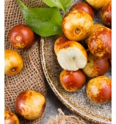 精品冬枣 2.5kg礼盒装 单果约16-22g 新鲜水果