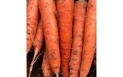 农家水果胡萝卜5斤生吃脆甜水果型新鲜蔬菜非红小樱桃潍坊沙窝青罗卜